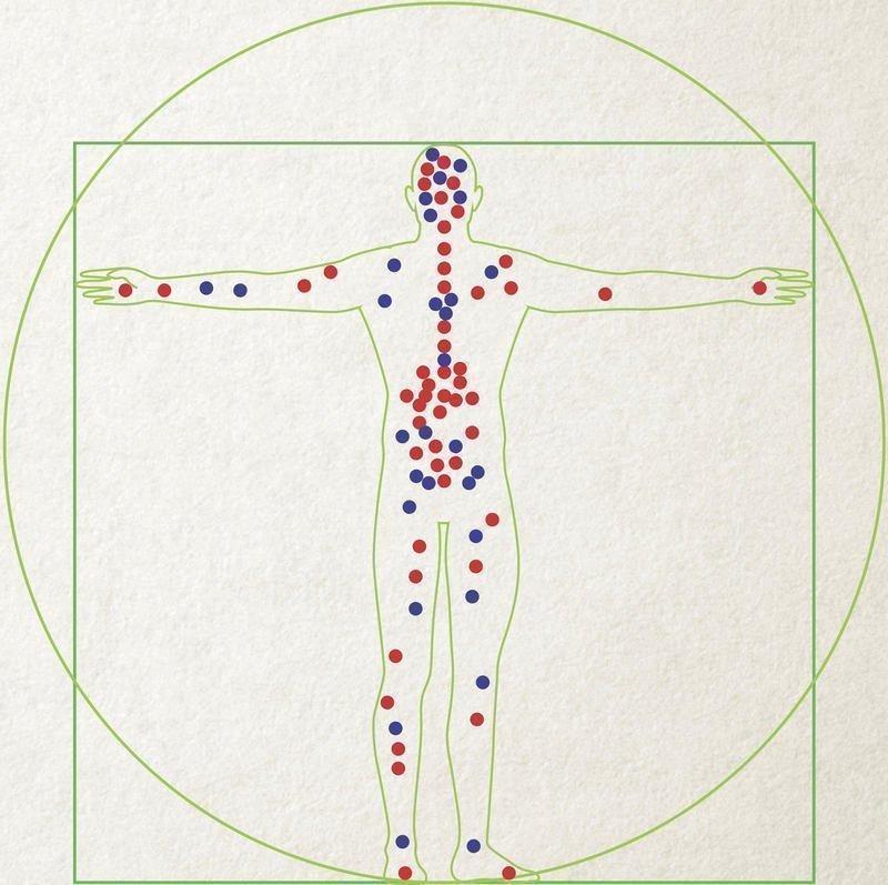 sisäinen_kannabinoidijärjestelmä-sijainnit-ihmisen-kehossa-min