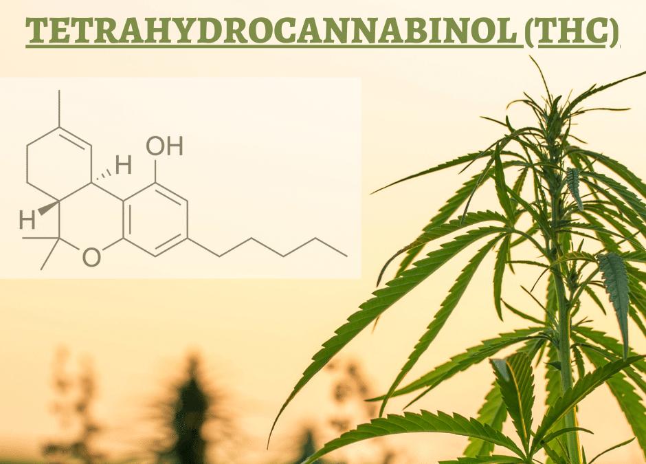 Mitä on THC?